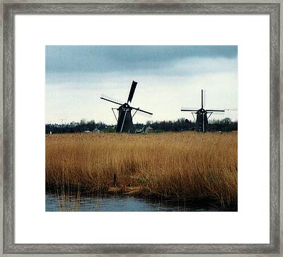 Two Friends Framed Print by John Scates