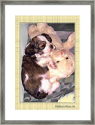 Two Stuffed Animals Framed Print by Debbie Portwood
