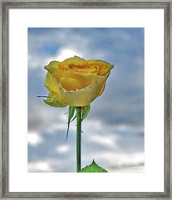 Framed Print featuring the photograph U R My Sky... by Marija Djedovic