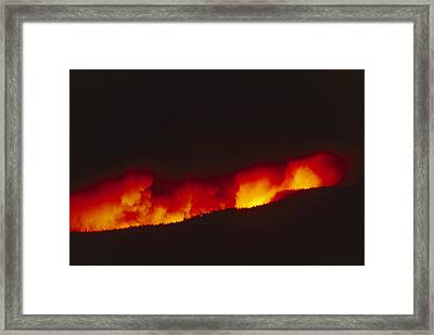 Untitled Framed Print by Michael S. Quinton