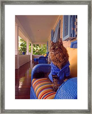 Veranda Framed Print