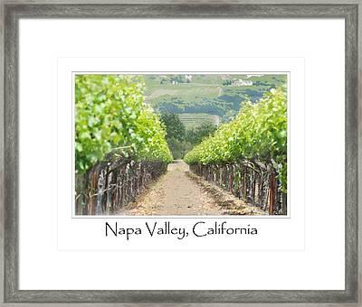 Vineyard In Spring Framed Print