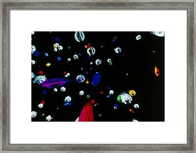 Visualisation Of Primordial Quark/gluon Plasma Framed Print by Arscimed