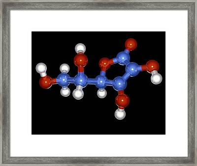 Vitamin C Molecule Framed Print by Laguna Design