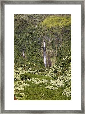 Waimoku Falls Framed Print by Jenna Szerlag