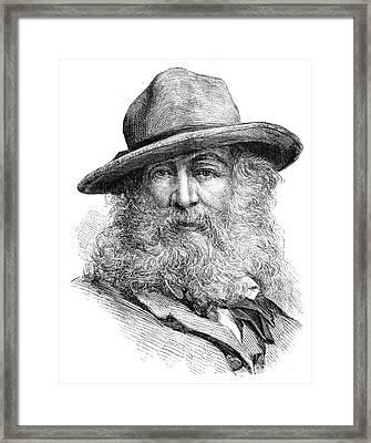 Walt Whitman (1819-1892) Framed Print by Granger