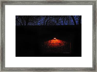 Watching Framed Print by Donna Blackhall