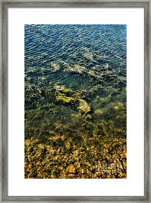 Water Framed Print by HD Connelly