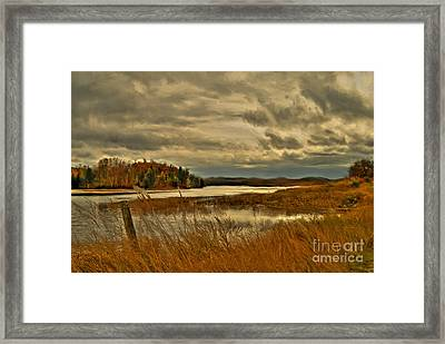 Waters Edge Framed Print by Alana Ranney