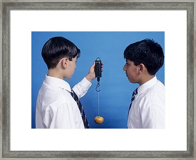 Weighing An Apple Framed Print by Andrew Lambert Photography