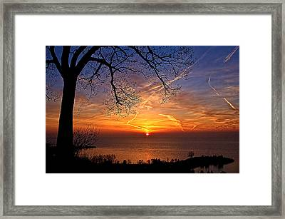 Welcome A New Day Framed Print by Theo Tan