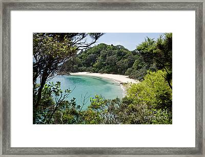 Whale Bay In New Zealand Framed Print