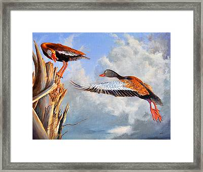 What Are You Whistling At Framed Print by AnnaJo Vahle