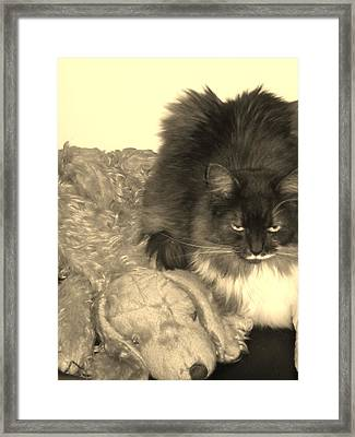 Where Is The Love Framed Print