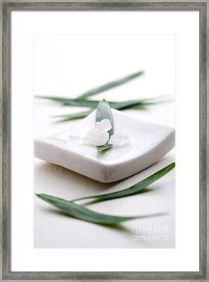 White Bath Salt Framed Print by Kati Molin