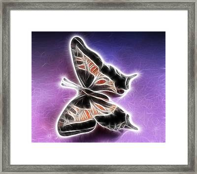 Wings Framed Print by Tilly Williams