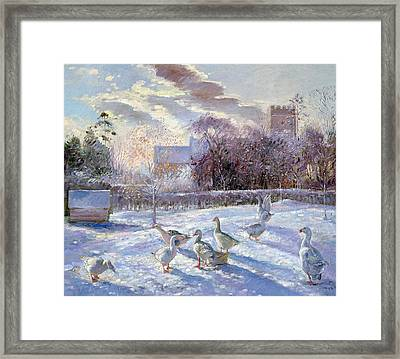 Winter Geese In Church Meadow Framed Print by Timothy Easton