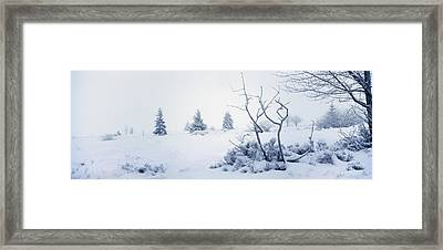 Winter On The Moor Framed Print by Ulrich Kunst And Bettina Scheidulin