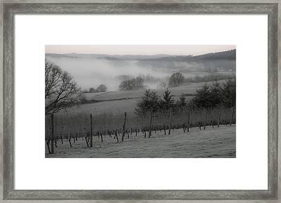 Winter Vineyard Framed Print by Jean Noren