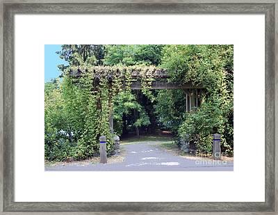 Wood Trellis Framed Print