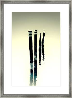 Wooden Piles Framed Print by Joana Kruse