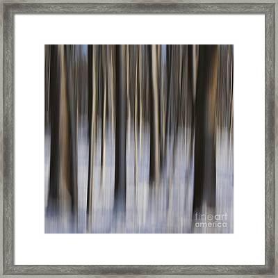 Woodland Fantasy Framed Print by Heiko Koehrer-Wagner