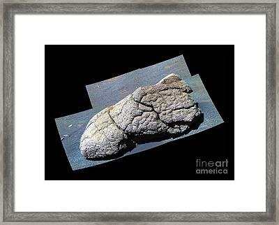 Wopmay Rock, Mars Framed Print