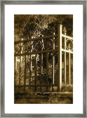 Framed Print featuring the photograph Wrought Iron Fence by Robin Regan