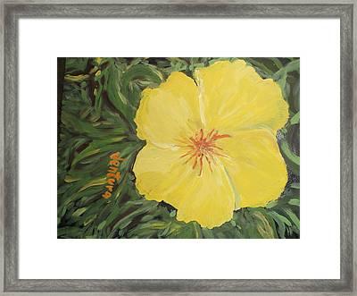 Yellow Alamander Framed Print