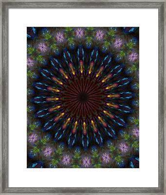 10 Minute Art 120611a Framed Print by David Lane