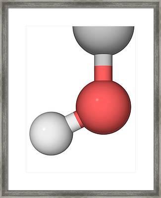 Molecular Model Framed Print