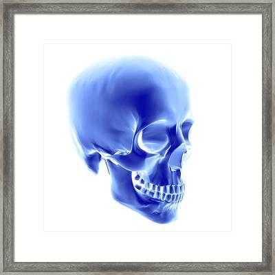 Skull, Computer Artwork Framed Print