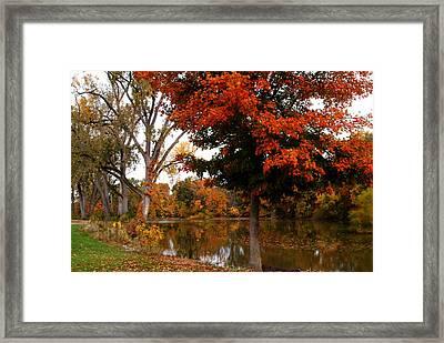 101011-242 Framed Print by Mike Davis