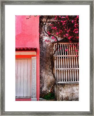 10b-30b Framed Print by Skip Hunt