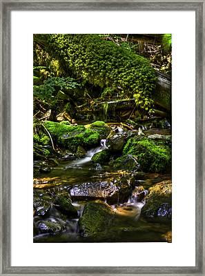 Lost Girl Creek Framed Print by Grover Woessner