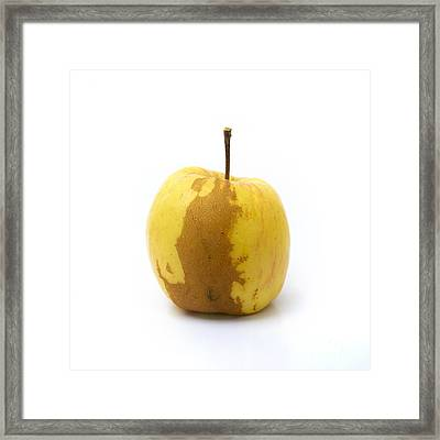 Apple Framed Print by Bernard Jaubert