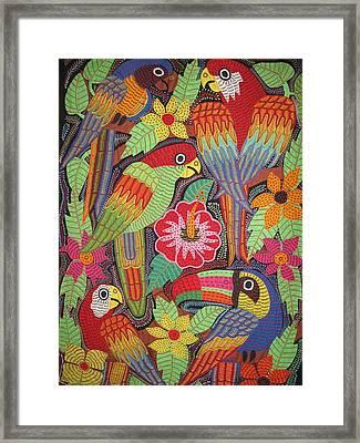 Birds Of Panama Framed Print by Kathy Othon