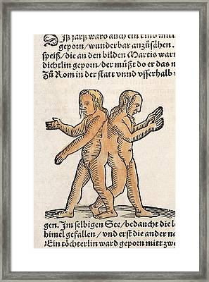 1557 Lycosthenes Conjoined 'siamese Twins Framed Print by Paul D Stewart