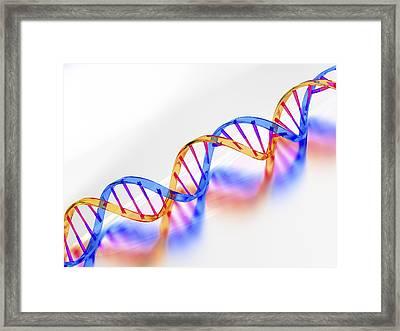 Dna Molecule, Artwork Framed Print by Laguna Design