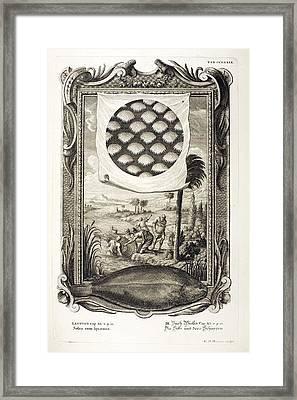 1731 Johann Scheuchzer Fish Denticles Framed Print
