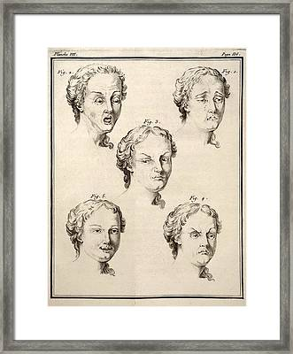 1749 Human Emotions And Expression Buffon Framed Print by Paul D Stewart
