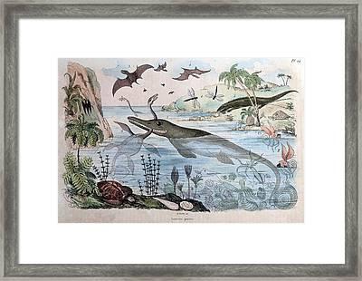 1834 Guerin Engraving 'extinct Animals Framed Print by Paul D Stewart