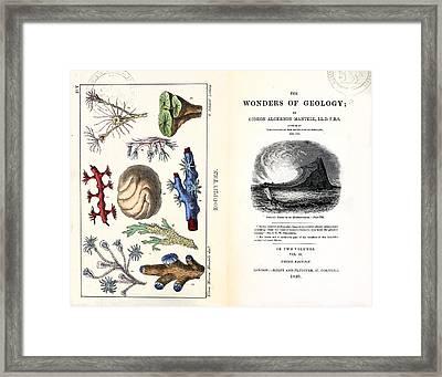 1838 Frontis Mantell \wonders Of Geology\ Framed Print by Paul D Stewart