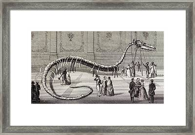 1851 Hydrarchos Whale Fake Monster Fossil Framed Print by Paul D Stewart