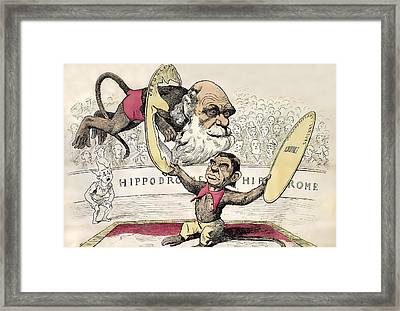 1878 Darwin As A Circus Monkey By Gill Framed Print by Paul D Stewart