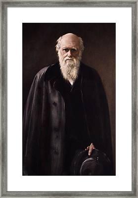 1881 Charles Darwin Portrait Aftr Collier Framed Print by Paul D Stewart