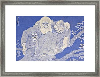 1909 Cartoon Darwin With Apes Detail Framed Print by Paul D Stewart