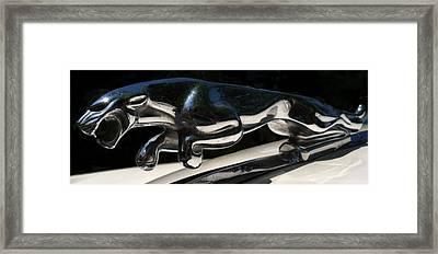 Framed Print featuring the photograph 1959 Jaguar Hood Ornament by Elizabeth Coats