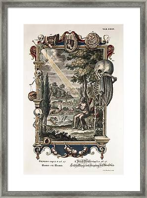 1731 Johann Scheuchzer Creation Of Man Framed Print