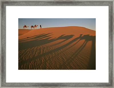 A Tuareg Tribesman Leads His Camels Framed Print by Carsten Peter